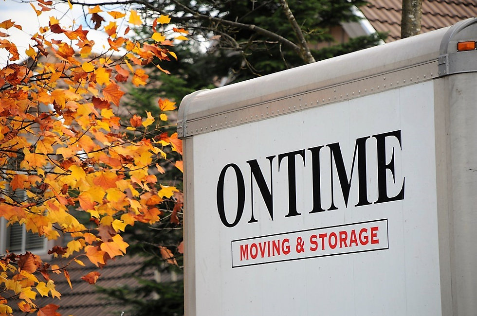 moving, packing, and storage services