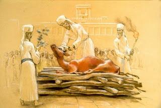 Parashat Shemini  -  Shabbat Parah