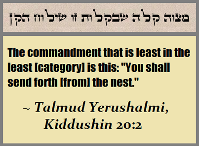 The Least of the Commandments
