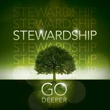 The Glory and Futility of Stewardship