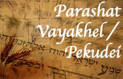 PARASHAT VAYAKEHL AND PEKUDAI