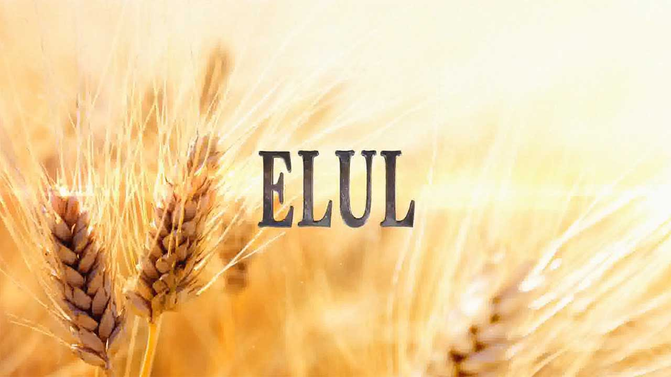 Elul: How to Realistically Change the World