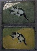 blackcatwhitecat 1.jpg