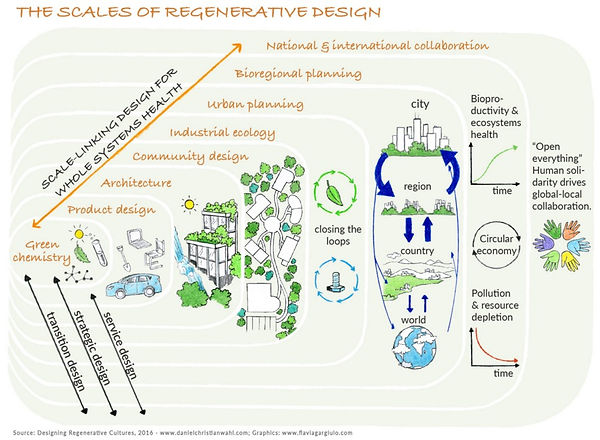 Scales of Regenerative Design.jpeg