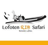 Lofoten Rib Safari.png