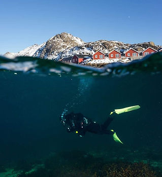 Lofoten Diving.jpg