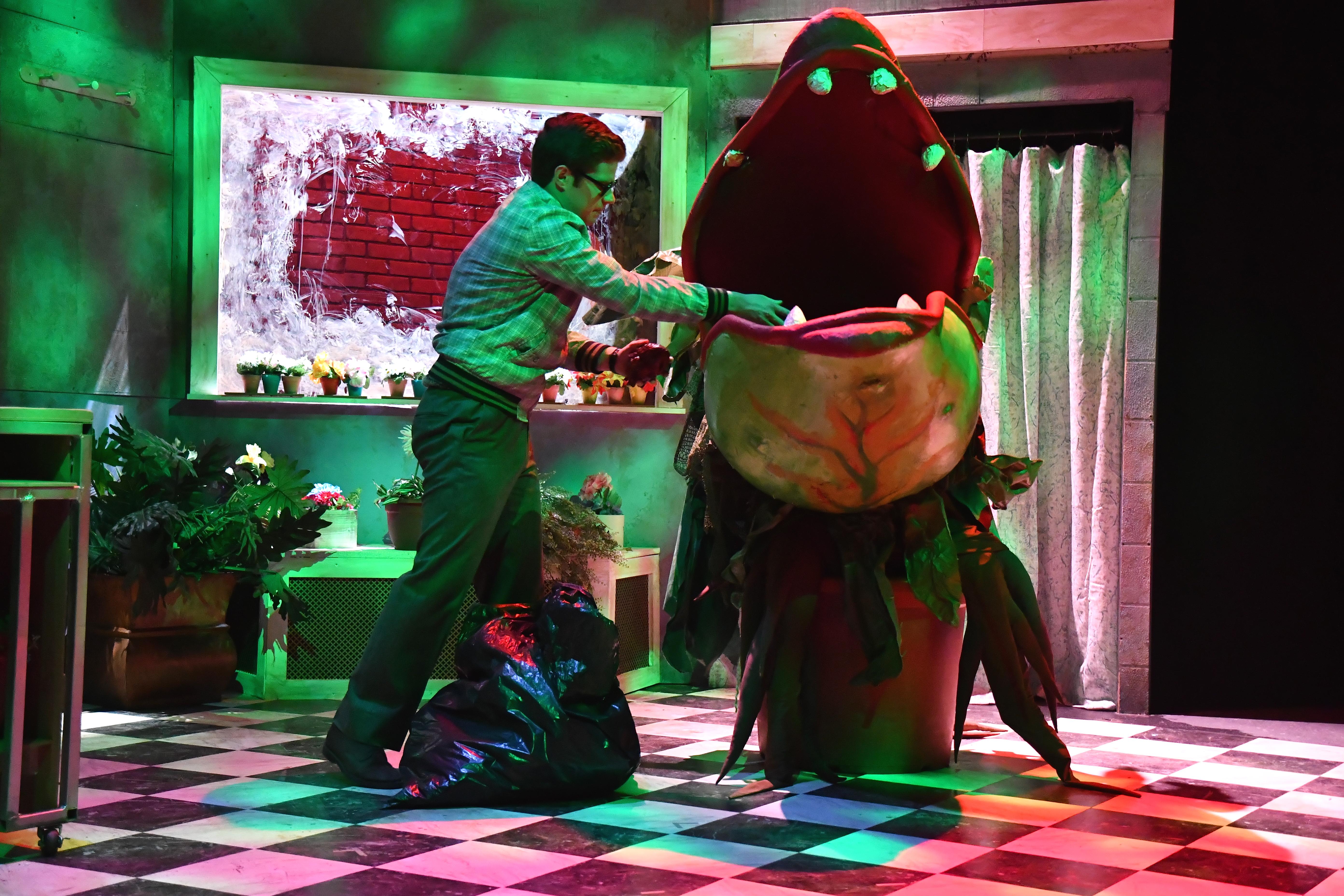 Little Shop of Horrors096