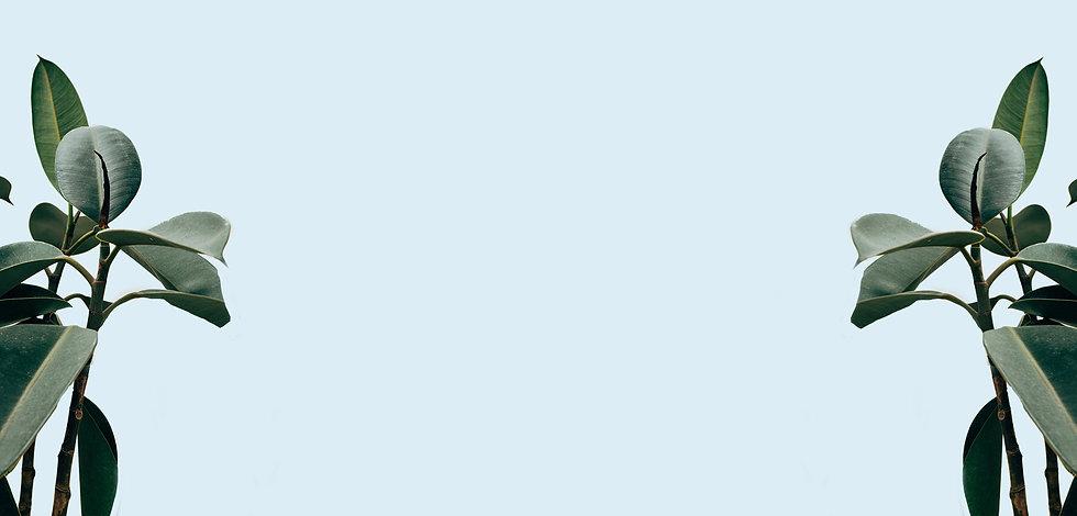 ר'ע כחול.jpg