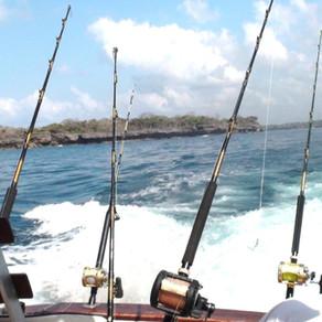 Deep Sea Fishing - Trip on the Kenyan Coast 1.0.1