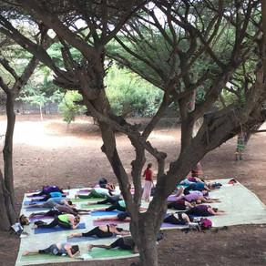 Lamu Yoga Festival 2019