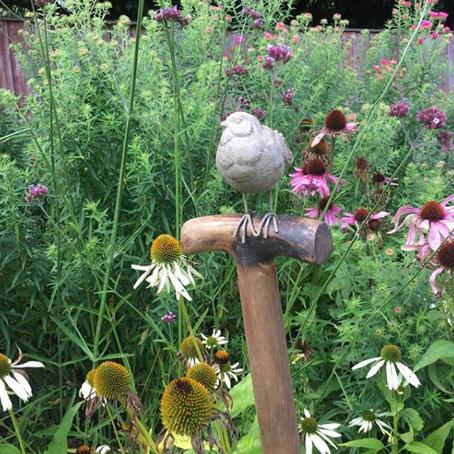 Meet Feature Member | Bird On A Spade