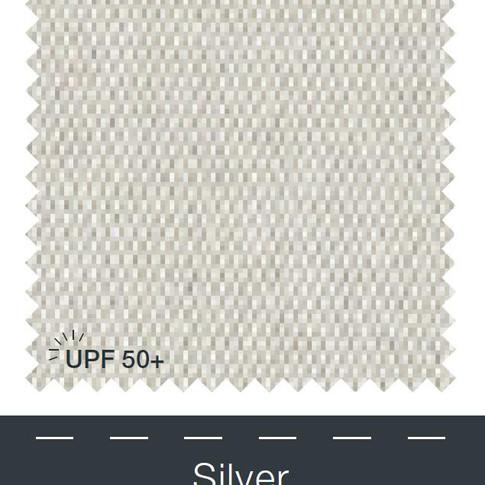 5035_silver