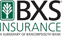 BXS-Logo.png