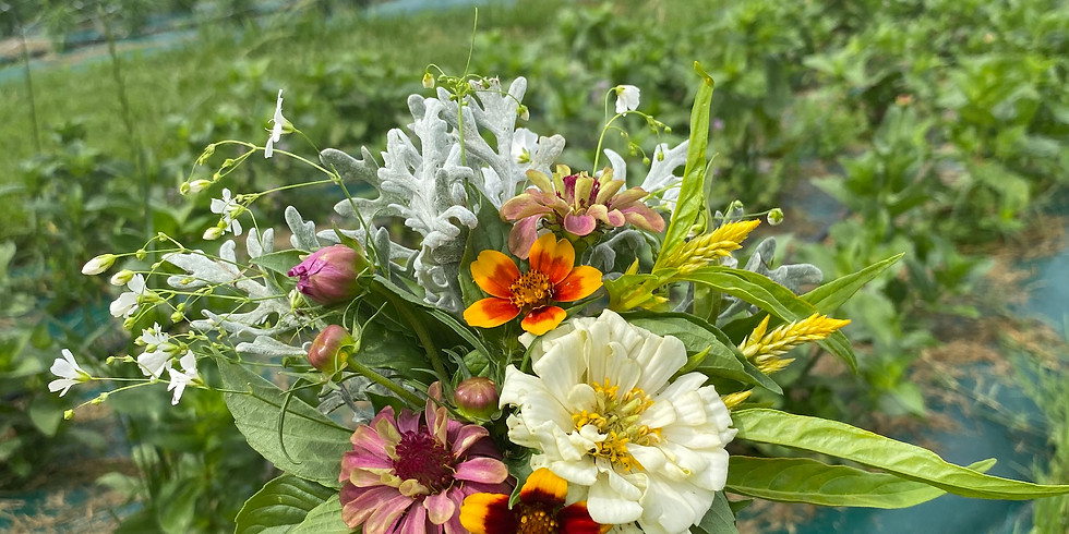 Pick Your Own Flower Patch: Sunset