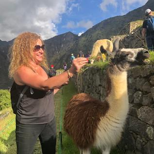 Feeding Time in Peru