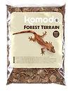 forest terrain.jpg