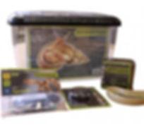 Komodo Basic African Land Snail Kit