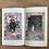 Thumbnail: THE BUTTERFLY DREAM / Rachel Adeline Holmes