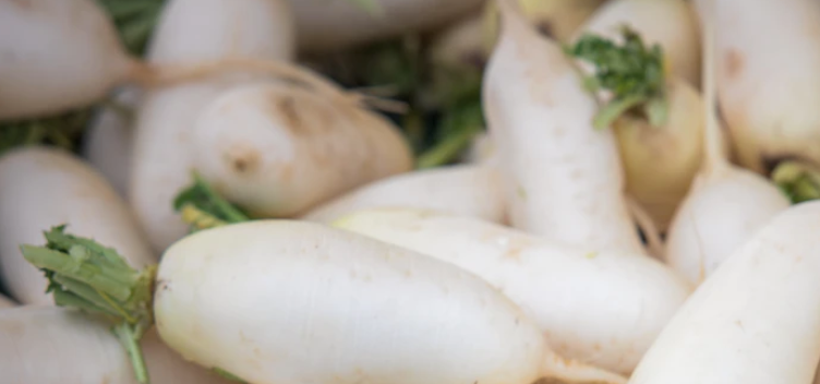 How to Grow Daikon Radish From Seed