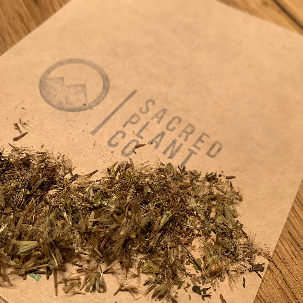 Sacred Plant Co Candyleaf Seeds