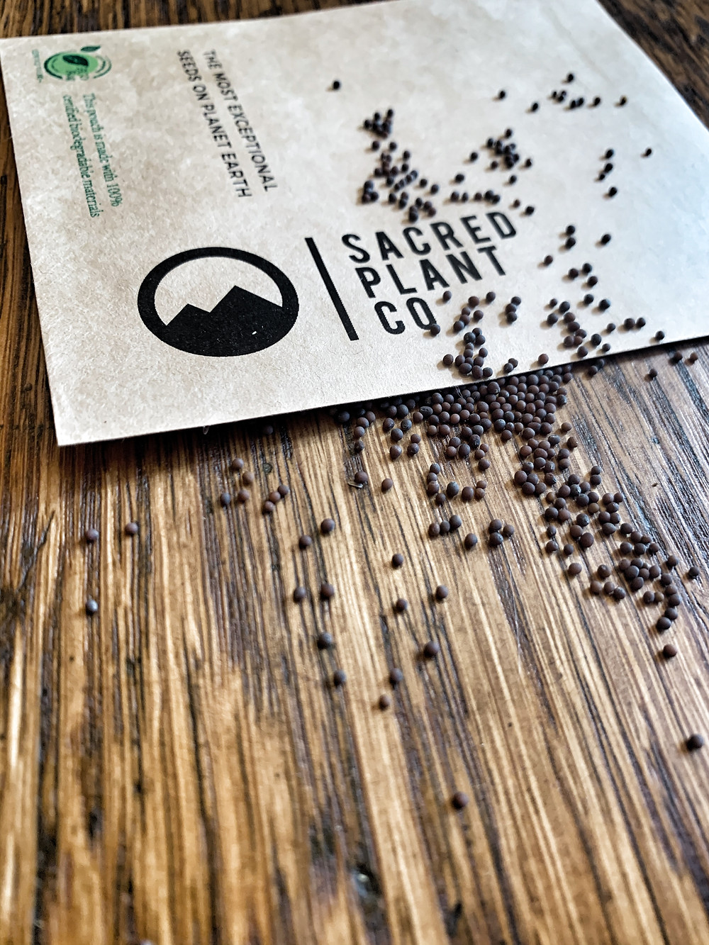 Sacred Plant Co Giant Mustard Seeds