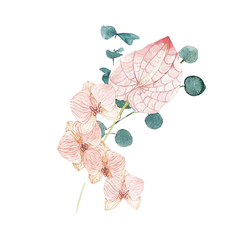 bouquet-19%20lo_edited.png