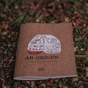 """Presentación del poemario """"AB-ORIGEN"""" en Chiloé"""