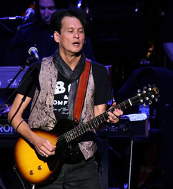 Roger Daltrey guitarist