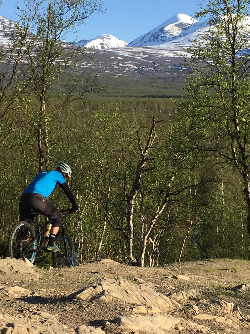 MTB i Abiskodalen.