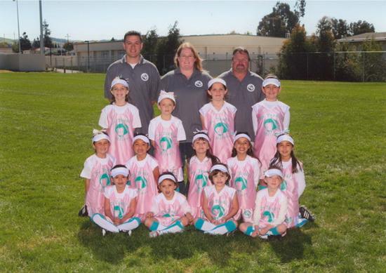 Dr. Yazdi softball team THE MOLARS