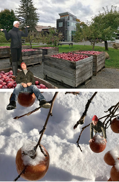 Montage_pomme-automne-hiver.jpg