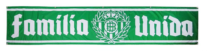 Bandera Familia Unida.JPG
