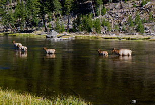 Wyoming - 21/09/2013