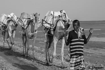 Ethiopia - 07/01/2016