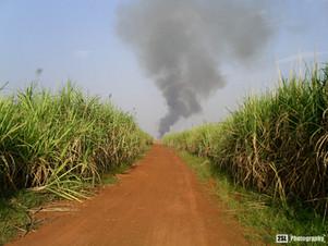 Burkina Faso - 28/12/2004