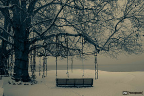 Switzerland - 15/01/2013