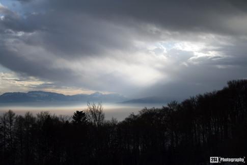 Switzerland - 31/12/2007