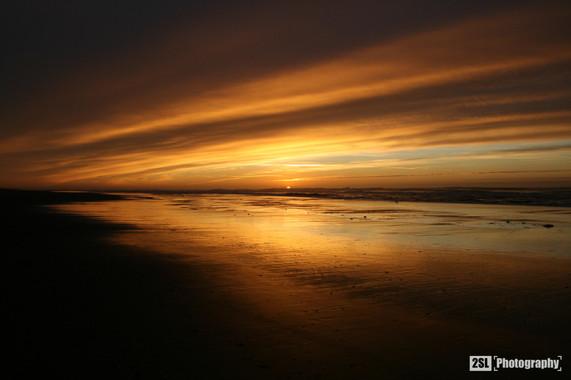 California - 11/12/2006