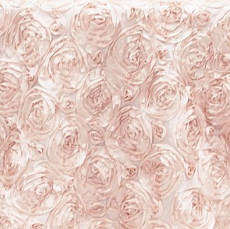 Satin Rose