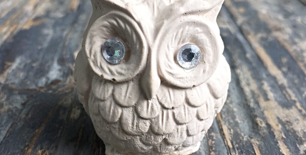 3D Small Owl