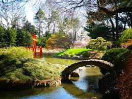 Brooklyn Botanic Garden.jpeg