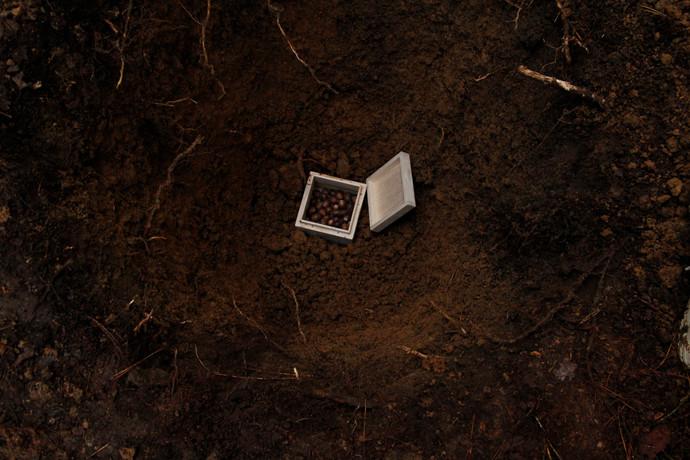 どんぐりを埋める 2014   保存の為に煮沸乾燥処理を施したどんぐり・拾ってきたどんぐり・桐箱    ーーー   煮沸乾燥処理を施したどんぐりは100年ほど保存が利くが、発芽能力は失われてしまう。拾ってきたどんぐりは発芽して木々となり、やがて種子が実り次の世代へと命は受け継がれていくが、拾ってきたどんぐり自体は残らない。保存の為に煮沸乾燥処理を施したどんぐりは桐箱に入れ、拾ってきたどんぐりはそのまま、それぞれを同じ場所に埋める。残り方の異なるそれぞれを一緒に残す事で、それぞれの残り方の意味や価値を考える。