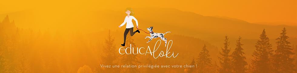 Bandeau logo Site-01.png