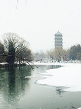 2019 snow 3.jpg