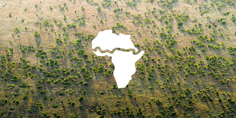 A big data collaboration between Yale CEA and the UNCCD