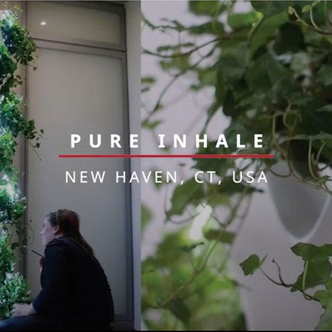 Pure Inhale Connecticut - 4th prize winner PhD student, Phoebe Mankiewicz