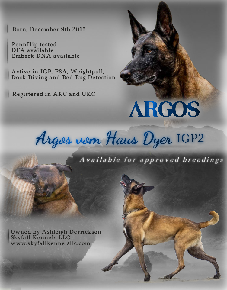 Argos Ad fixed.png