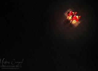 Photography Artwork