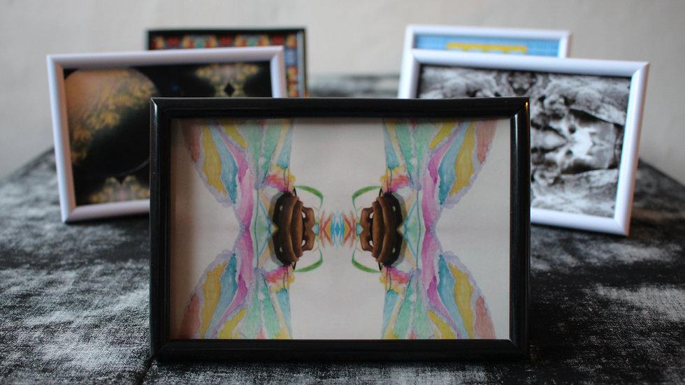 MINNIE ILLING ADAMS - «Butterfly» Impressions numérique, 16 x 10,5 cm