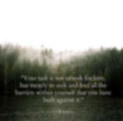 April Paige Quote - Rumi